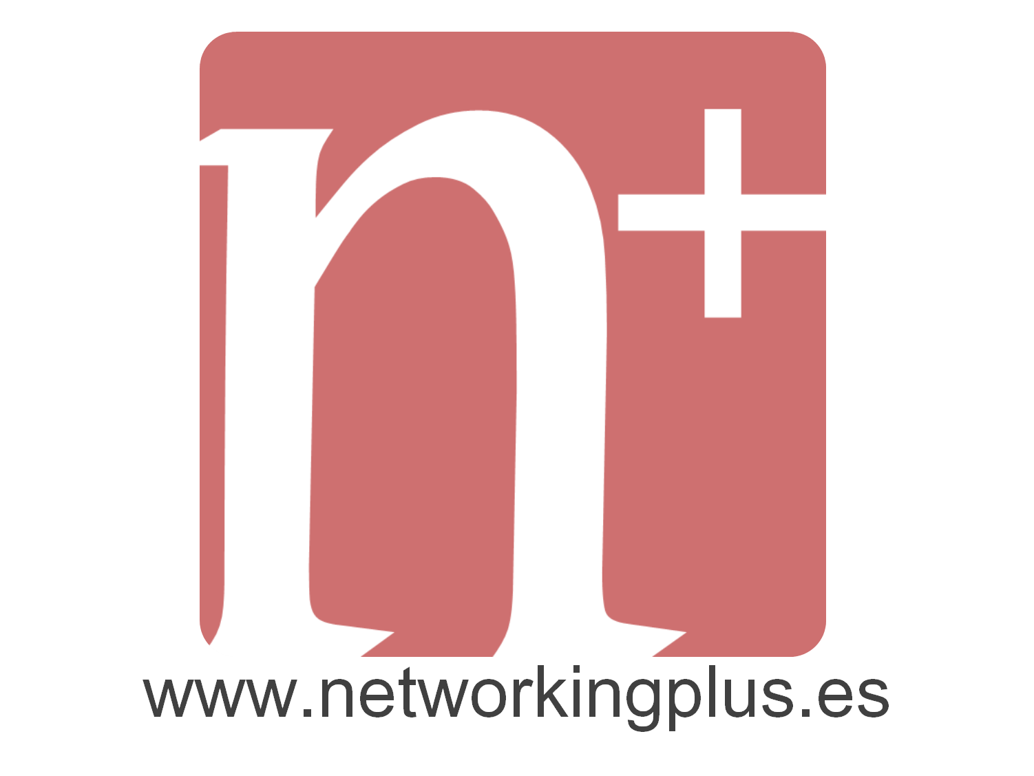 http://networkingplus.es